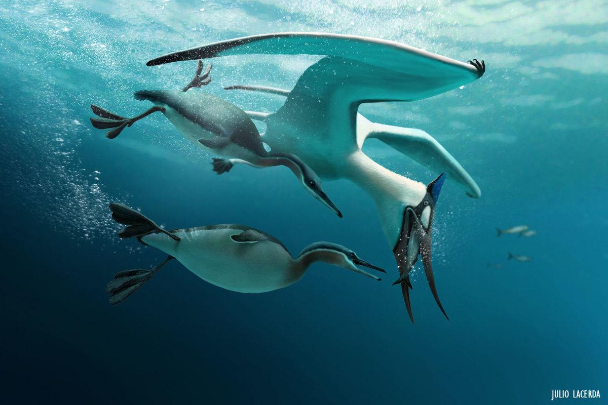 Pteranodon and Hesperoronis