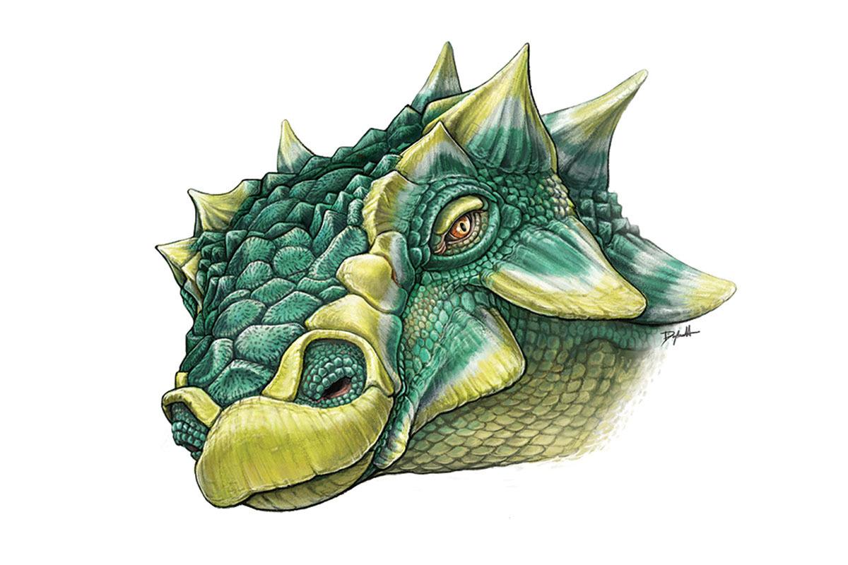 Artist's rendition of Zuul's head
