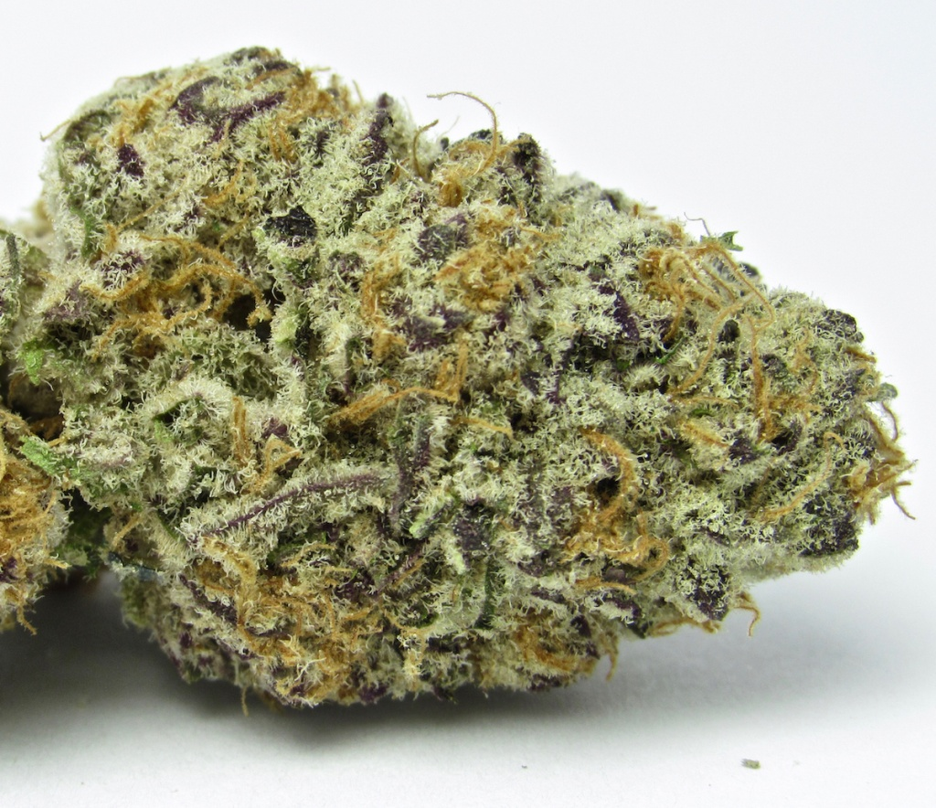 Purple Punch by David Downs