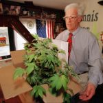 Founder of the Cannabis Cultivators' Club and gubernatorial candidate Dennis Peron, prepares a box carrying his personal belongings from his desk, including a marijuana plant, Monday, April 20, 1998, at the club on Market St, in San Francisco. The Sherrif's Department is expected to close the club sometime Monday, but the club plans to re-open by 5 p.m., under new ownership and a new name. (AP Photo/Ben Margot)