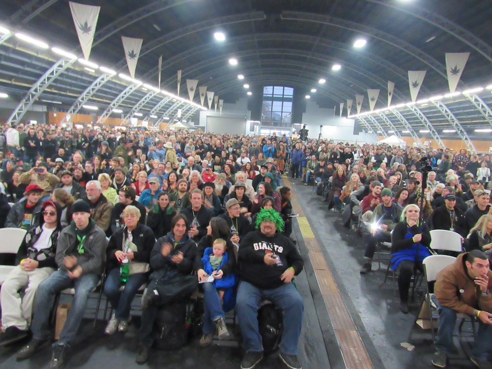 Attendees at The Emerald Cup proved pretty mellow. Shocking, right?