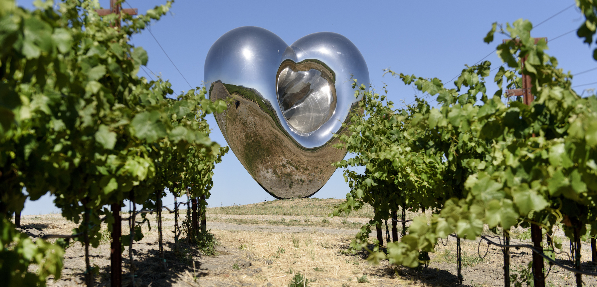Donum Estate, Donum, architecture, art and wine, design, sculptures, vineyard sculptures, Sonoma, California, The Press