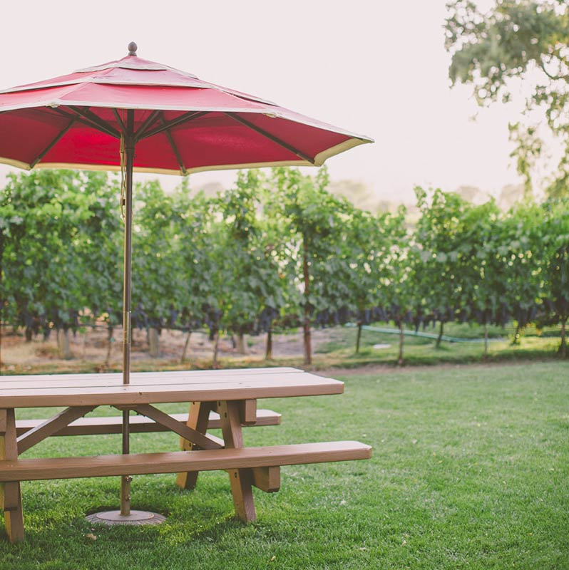Picnic Table, Napa Cellars, Oakville