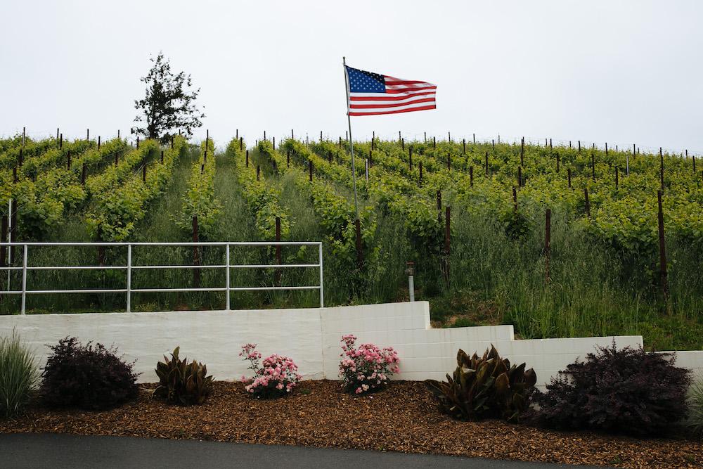 Lazy Creek, Vineyards, Mendocino, Carano, Gewurtztraminer, rose, The Press