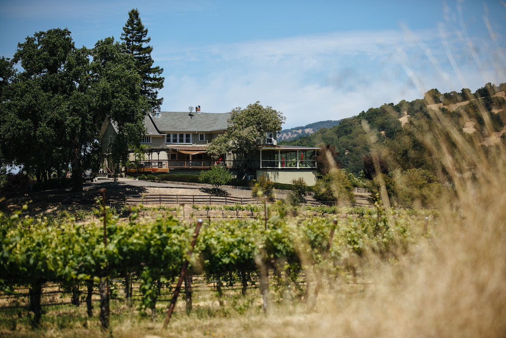 Jaxon Keys, winery, vineyard, view, distiller, farmhouse tasting room, tasting room, Hopland, California, The Press