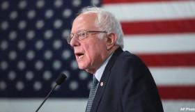 Bernie_Flag