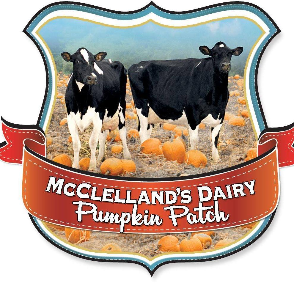 image of McClellens Dairy Pumpkin Patch