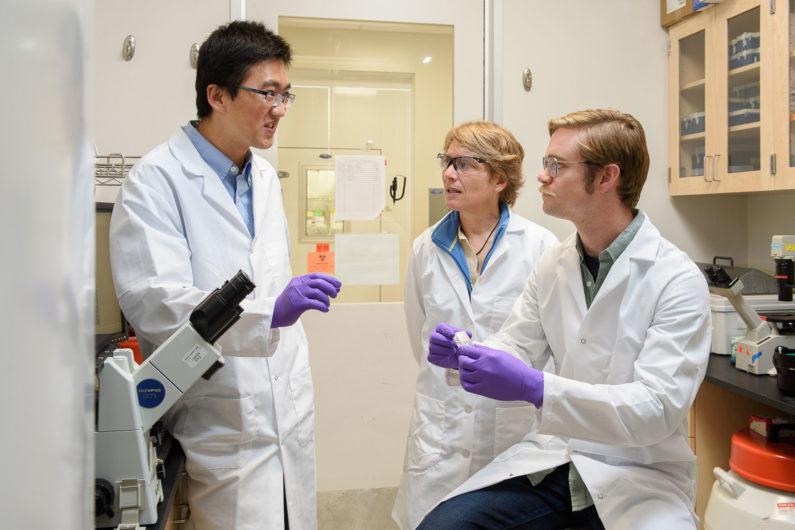 Professor Bertozzi with grad students Han Xiao and Elliot Woods