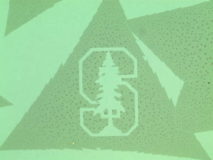 etched nanoscale image of Stanford tree