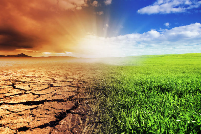 Earth as green or dried out