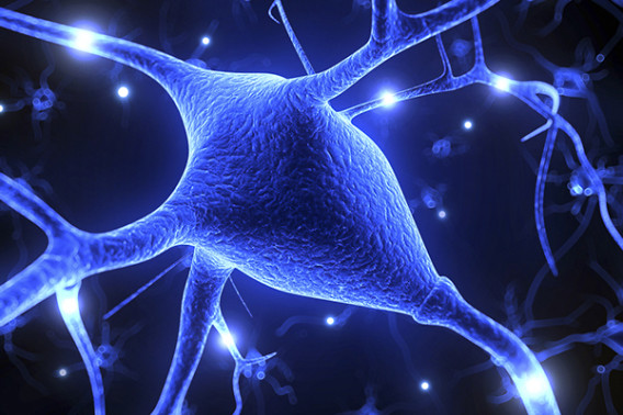 Photo of brain activity with glowing trails of light spreading between connected nerves.