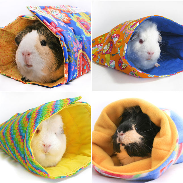 Pig Sleeping Bags : What guinea pig doesn't need a sleeping bag