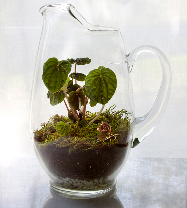 21 diy terrarium using a glass pitcher from all sorts of pretty1