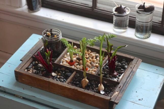 18 Indoor Garden Ideas To Green Your Apartment Brit Co