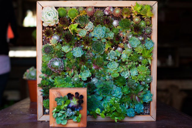 Vertical Garden Wall Hanging : Crunched for space? Put the outdoors ...