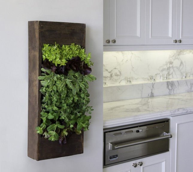 Indoor Herb Box Awesome Of Vertical Herb Garden in Your Kitchen Images
