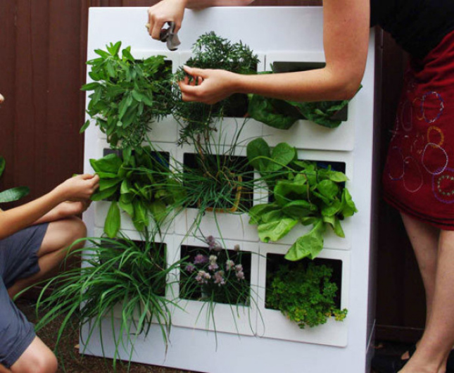 Apartment Garden On Pinterest Herbs Garden Plant Stands And Indoor ...