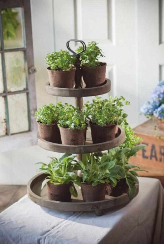 20 Ways To Start An Indoor Herb Garden Brit Co