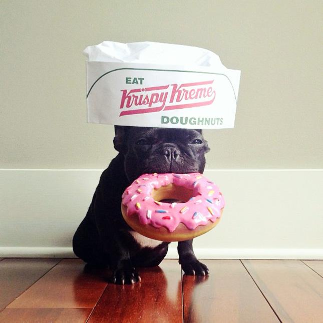 89-Donut