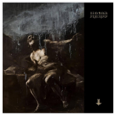 Behemoth : I Loved You At Your Darkest