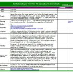 Example of short cycle innovation, showing a spreadsheet with details on timeline, people, training, budget, resources, incentives, sustainability, first steps, milestones and measures, success criteria, and evidence