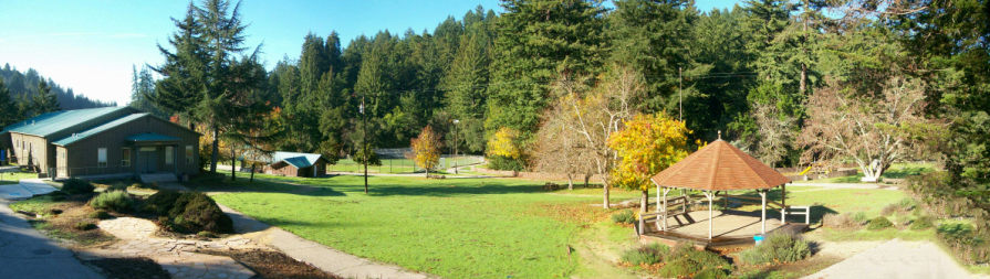 Camp 