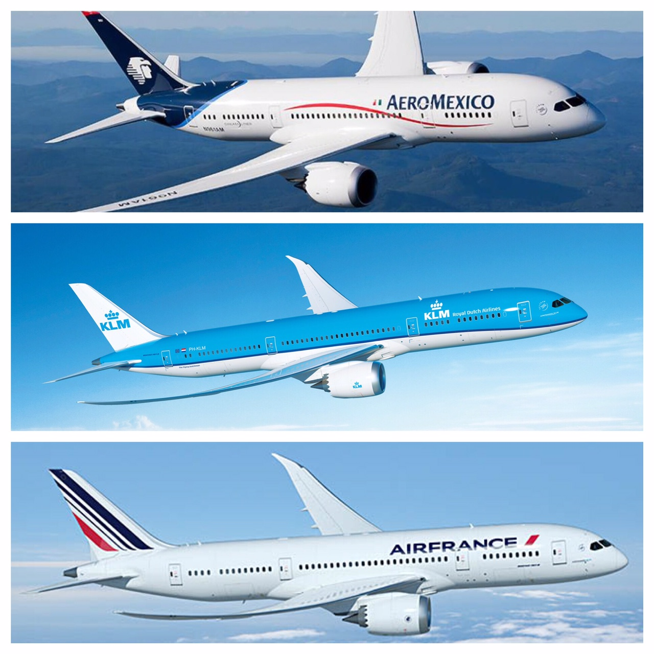 SkyTeam Dreamliners