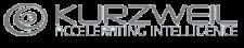 Kurzweil AI