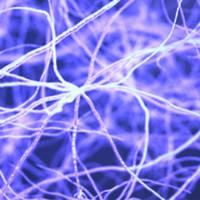 image: neurons