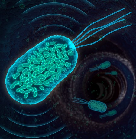 Illustration of genetically engineered bacteria