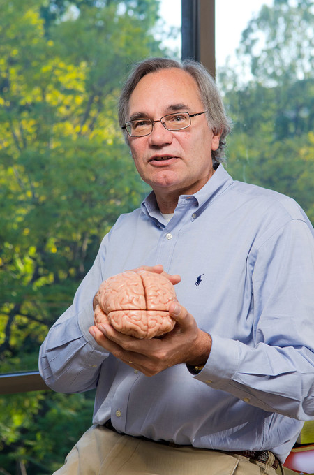 Richard Andersen holding a model of a brain.