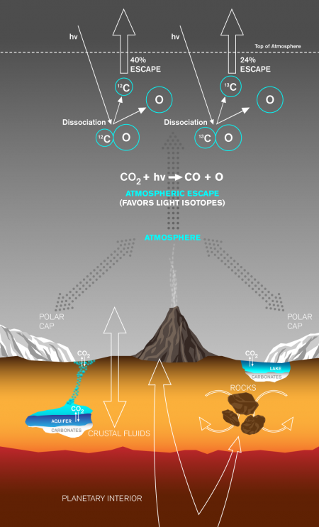 Carbon exchange and loss processes on Mars. Once in the atmosphere, CO2 can exchange with the polar caps or dissolve into waters, which can precipitate out solid carbonatess. CO2 in the atmosphere is lost to space at a rate controlled in part by the sun's activity. Through the mechanism described in the study, UV radiation encounters a CO2 molecule and produces CO and then C atoms. Since C-12 is more easily removed than the heavier C-13, the current martian atmosphere is enriched in C-13. - See more at: http://www.caltech.edu/news/tracking-down-missing-carbon-martian-atmosphere-48827#sthash.RGOXtQIf.dpuf