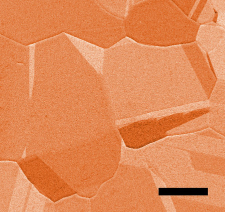 Copper foil microscopic image