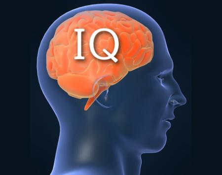 Neuroscientists Find That Status Within Groups Can Affect Iq