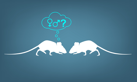 An illustration of two mice