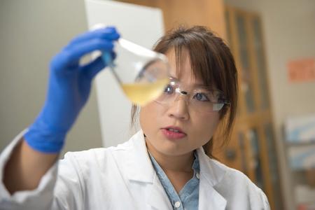 photo of Sek Bik Jennifer Kan, Postdoctoral Scholar in Chemical Engineering