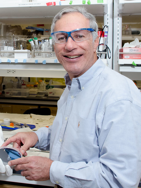 Portrait of Nate Lewis, the George L. Argyros Professor of Chemistry.