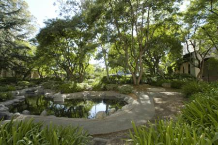 photo of Throop Pond at Caltech