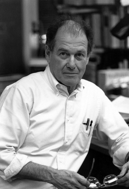 Jerry Pine