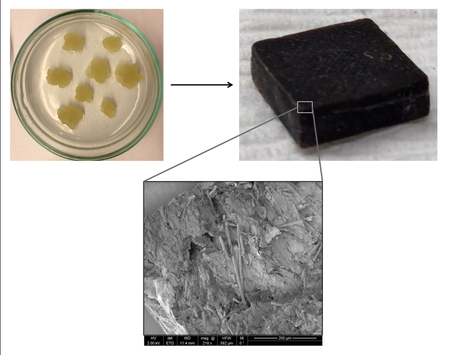 Artificial wood made from tobacco cells