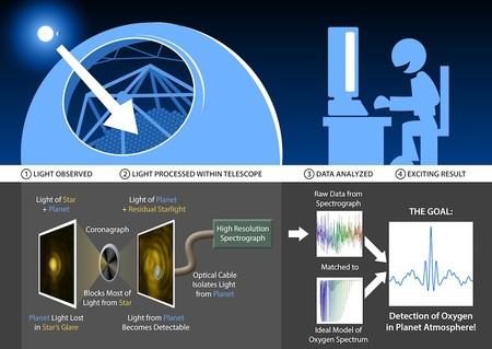 TMT coronagraph-spectrograph diagram