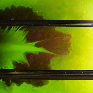 Dye flows through a simulated delta.
