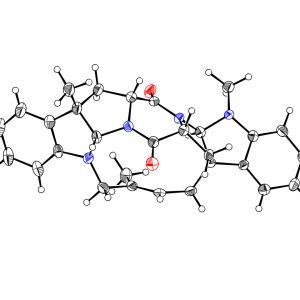 Molecular structure of Nocardioazine A.