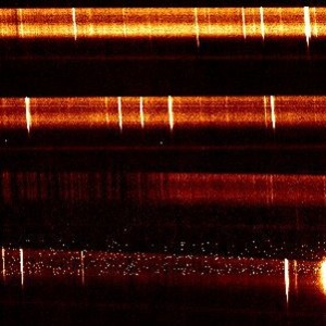 "NIRES ""first-light"" image"
