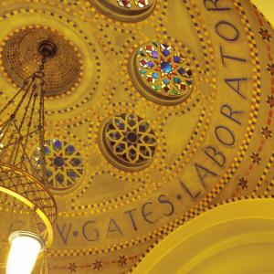 photo of Detail of Ceiling in Gates Laboratory