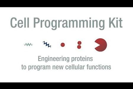 Cell Programming Kit - Elowitz Lab