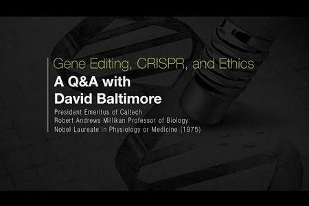 Gene Editing and Ethics: A Q&A with David Baltimore