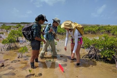 Drones Make 3-D Maps of Microbial Mats