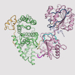 3-D structures of nuclear pore complex proteins