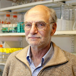 Michael Rosbash (BS '65), the Peter Gruber Endowed Chair in Neuroscience and professor of biology at Brandeis University and an investigator with the Howard Hughes Medical Institute